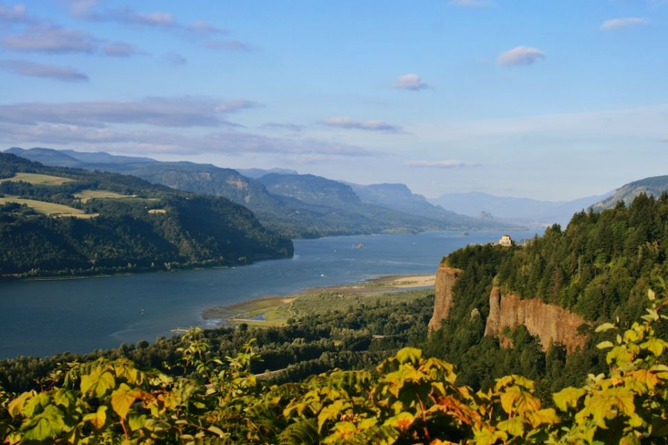 Chanticleer Point, Columbia Gorge 4x6.jpg